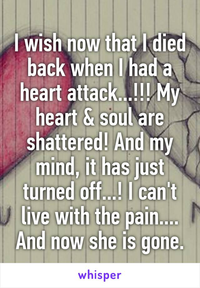 I wish now that I died back when I had a heart attack...!!! My heart & soul are shattered! And my mind, it has just turned off...! I can't live with the pain.... And now she is gone.