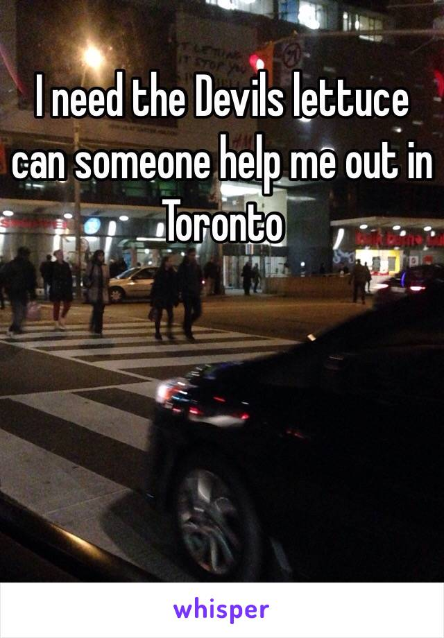 I need the Devils lettuce can someone help me out in Toronto