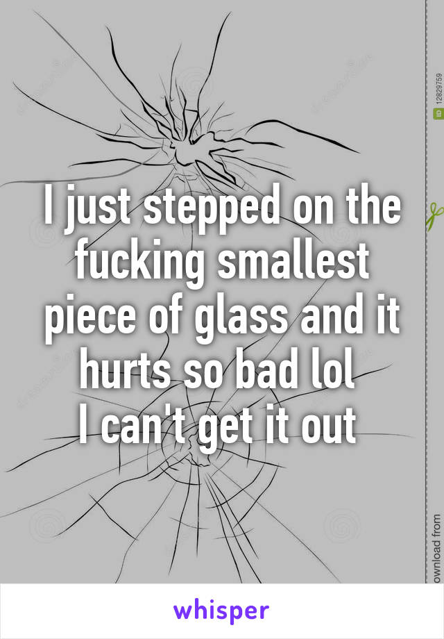 I just stepped on the fucking smallest piece of glass and it hurts so bad lol  I can't get it out