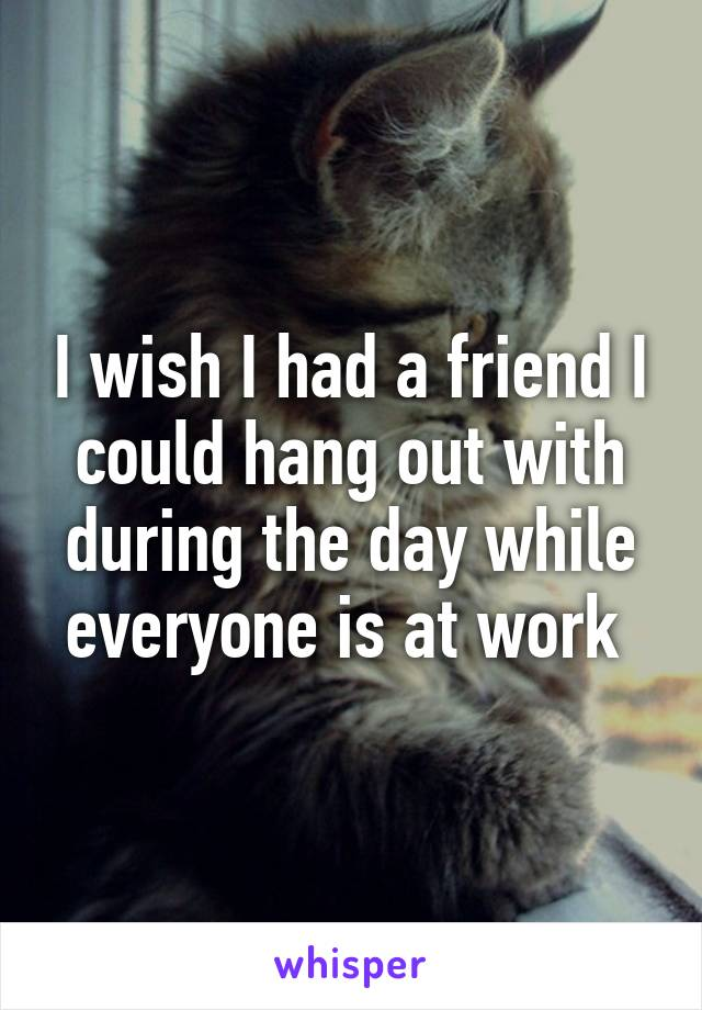 I wish I had a friend I could hang out with during the day while everyone is at work