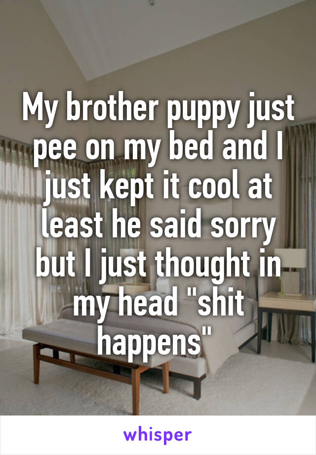 """My brother puppy just pee on my bed and I just kept it cool at least he said sorry but I just thought in my head """"shit happens"""""""