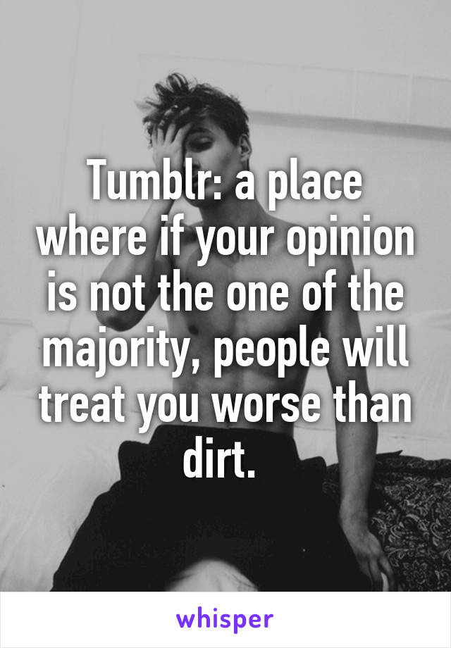 Tumblr: a place where if your opinion is not the one of the majority, people will treat you worse than dirt.