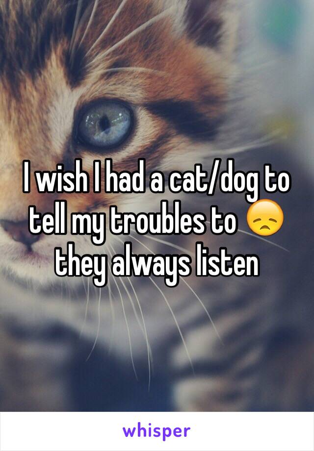 I wish I had a cat/dog to tell my troubles to 😞 they always listen