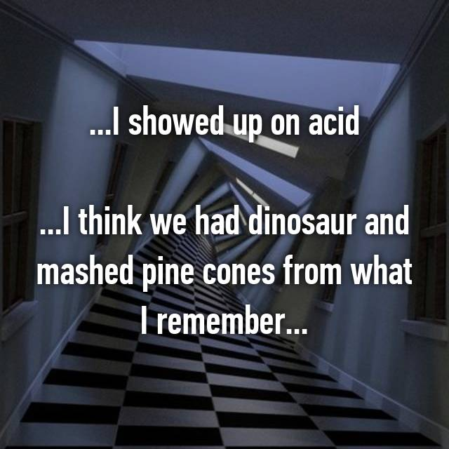 ...I showed up on acid  ...I think we had dinosaur and mashed pine cones from what I remember...