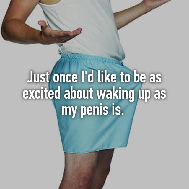penis excitat