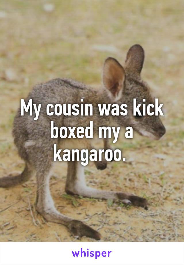 My cousin was kick boxed my a kangaroo.