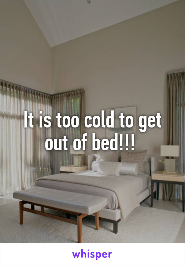 It is too cold to get out of bed!!!