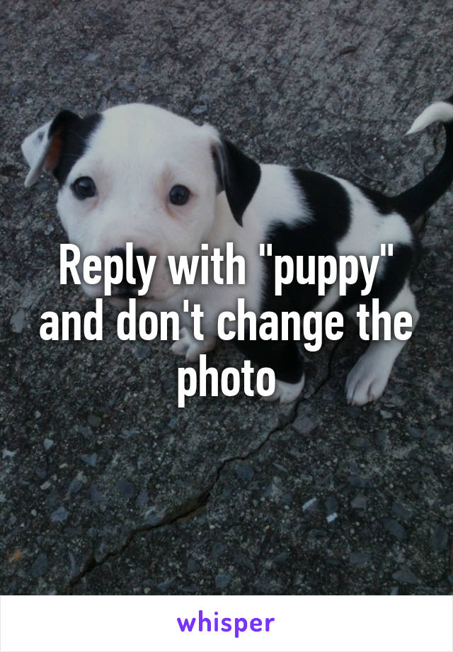 """Reply with """"puppy"""" and don't change the photo"""