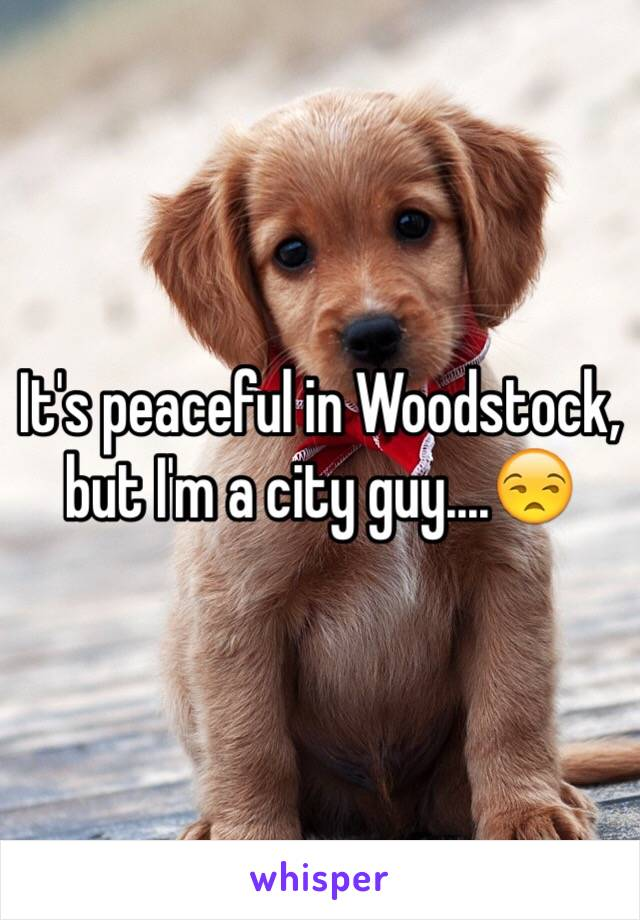 It's peaceful in Woodstock, but I'm a city guy....😒