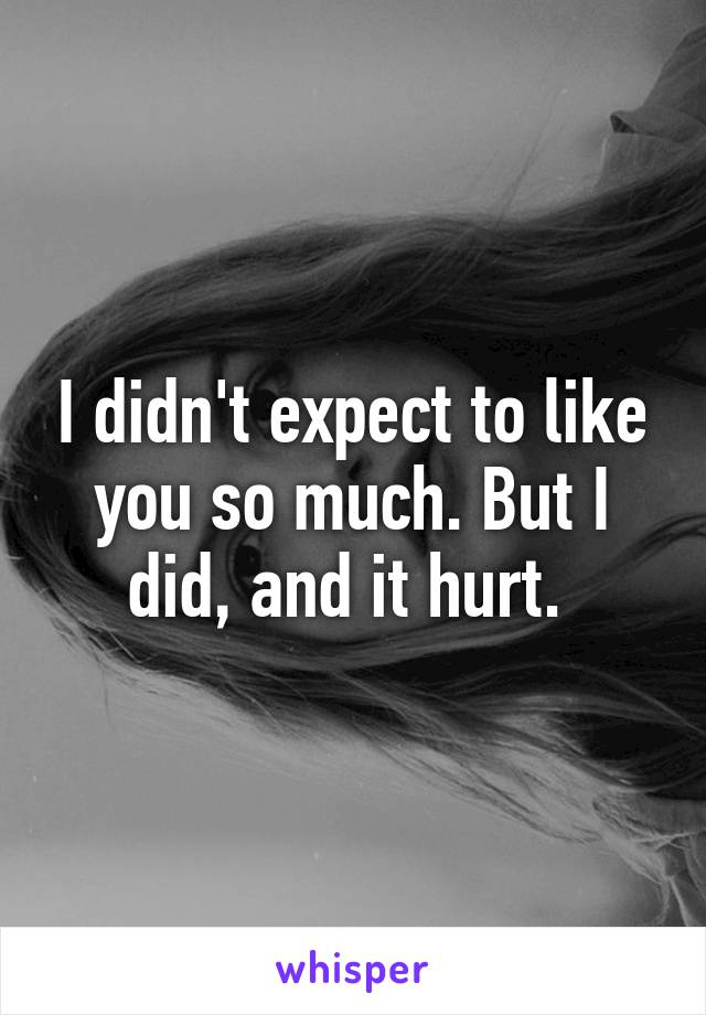 I didn't expect to like you so much. But I did, and it hurt.