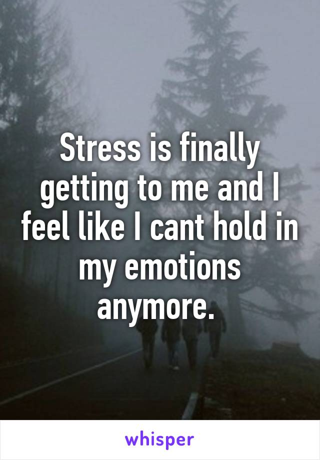 Stress is finally getting to me and I feel like I cant hold in my emotions anymore.