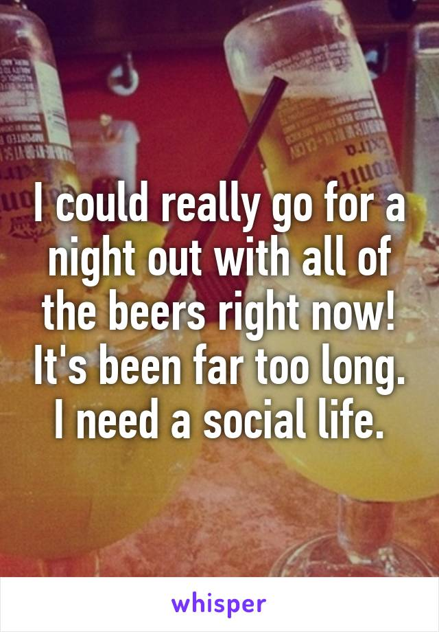 I could really go for a night out with all of the beers right now! It's been far too long. I need a social life.