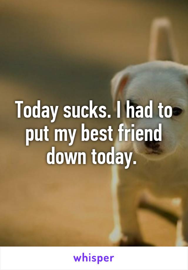 Today sucks. I had to put my best friend down today.