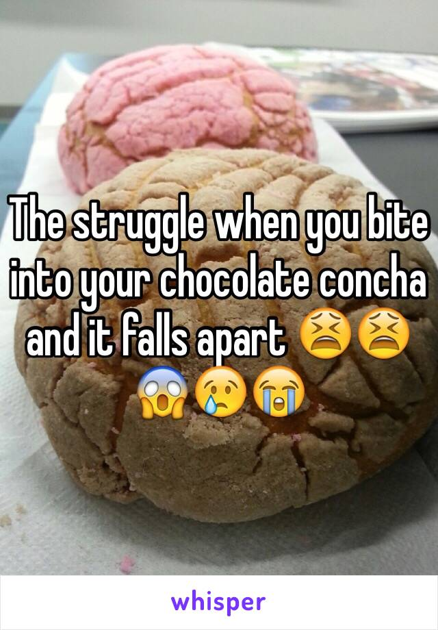 The struggle when you bite into your chocolate concha and it falls apart 😫😫😱😢😭