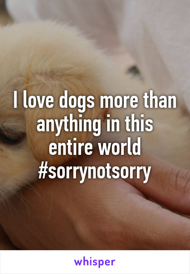 I love dogs more than anything in this entire world #sorrynotsorry