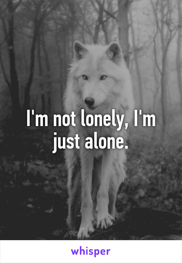 I'm not lonely, I'm just alone.