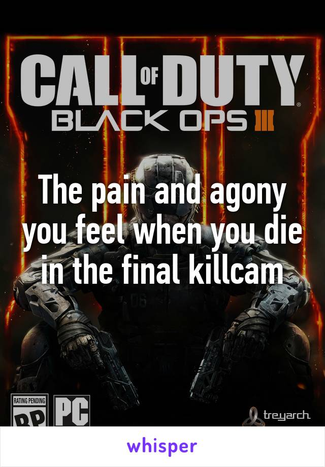 The pain and agony you feel when you die in the final killcam