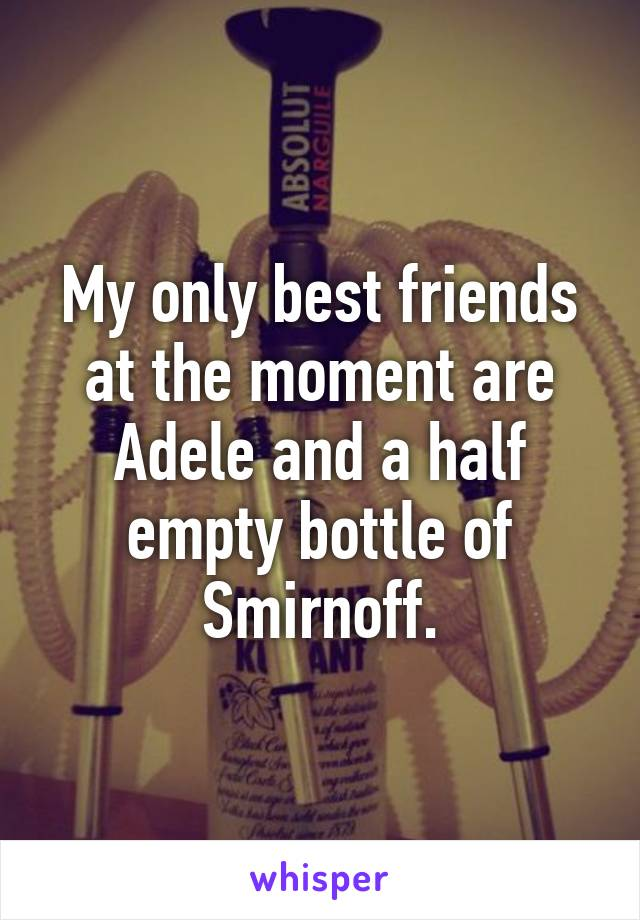 My only best friends at the moment are Adele and a half empty bottle of Smirnoff.