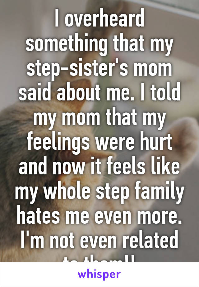 I overheard something that my step-sister's mom said about me. I told my mom that my feelings were hurt and now it feels like my whole step family hates me even more. I'm not even related to them!!