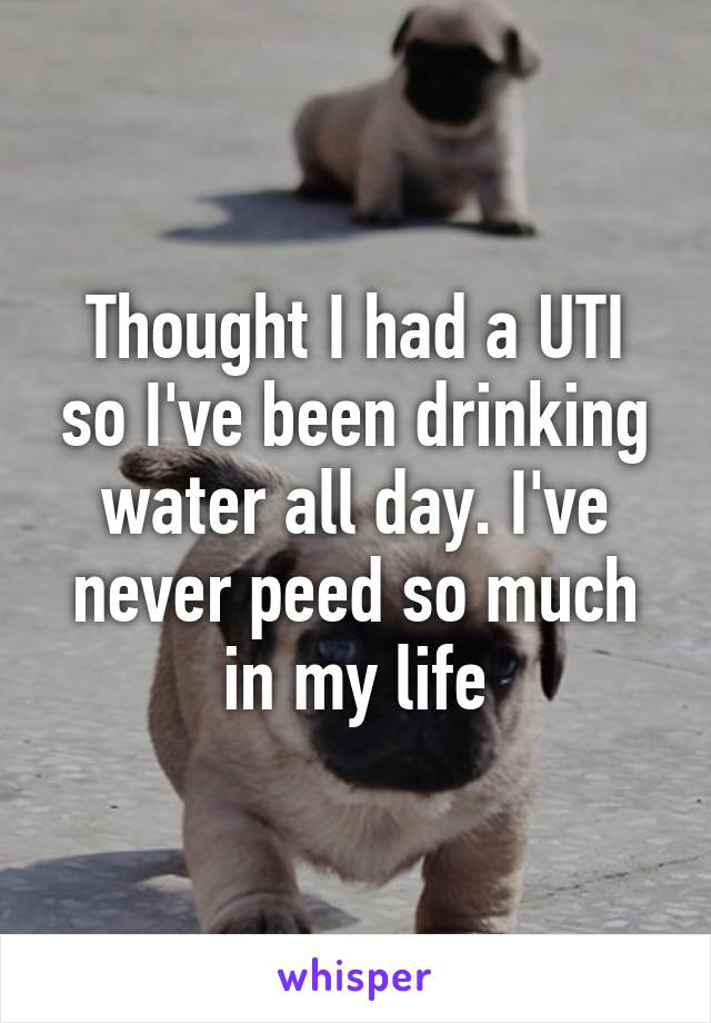 Thought I had a UTI so I've been drinking water all day. I've never peed so much in my life