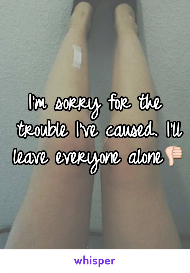 I'm sorry for the trouble I've caused. I'll leave everyone alone👎