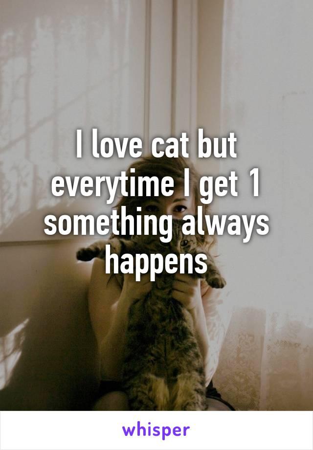 I love cat but everytime I get 1 something always happens
