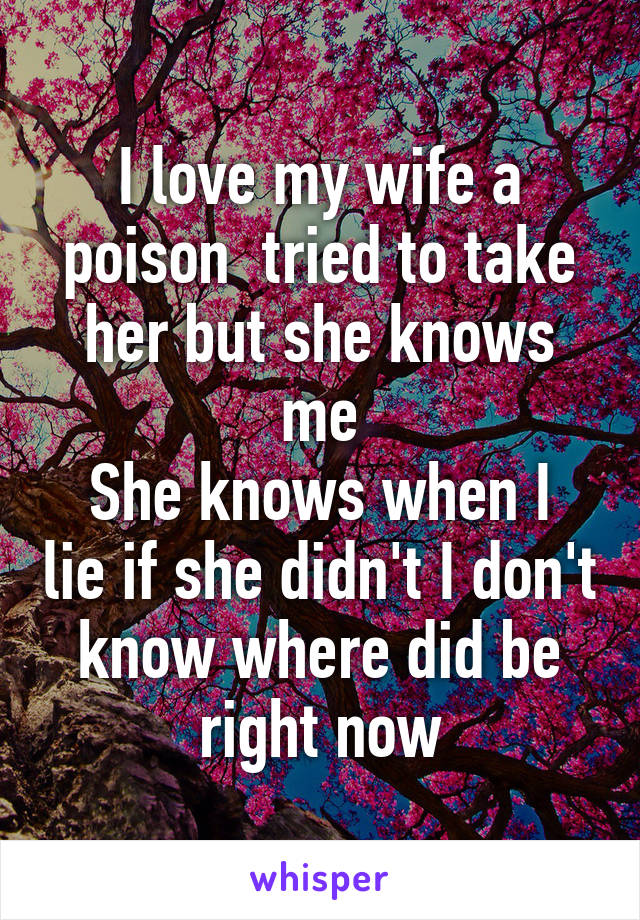 I love my wife a poison  tried to take her but she knows me She knows when I lie if she didn't I don't know where did be right now
