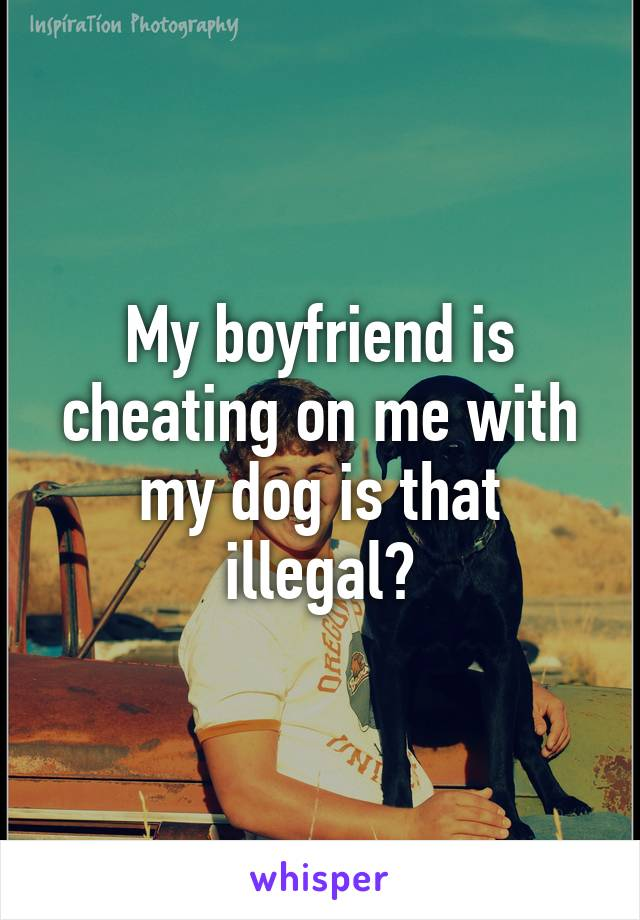 My boyfriend is cheating on me with my dog is that illegal?