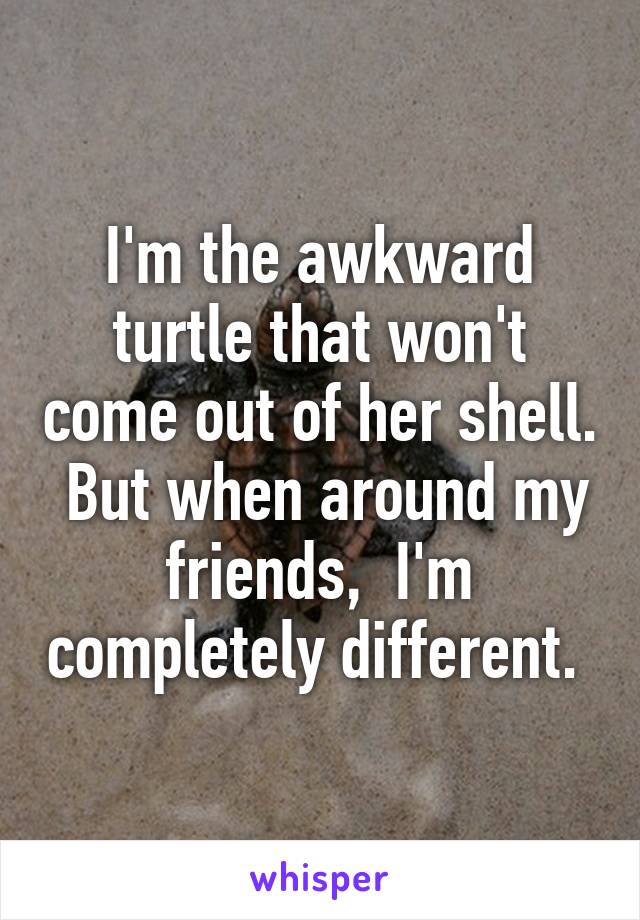 I'm the awkward turtle that won't come out of her shell.  But when around my friends,  I'm completely different.
