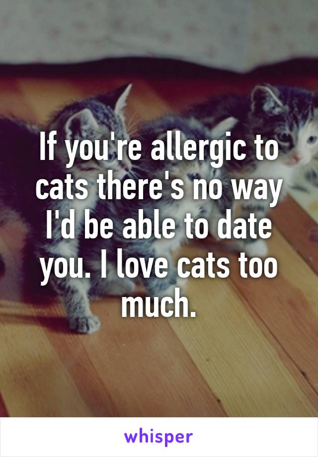 If you're allergic to cats there's no way I'd be able to date you. I love cats too much.