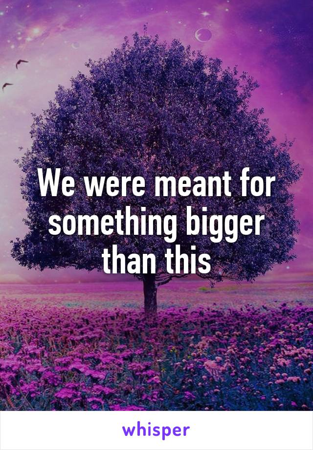 We were meant for something bigger than this