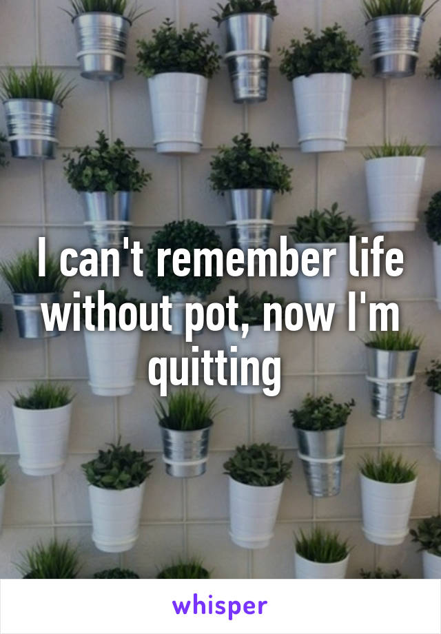 I can't remember life without pot, now I'm quitting