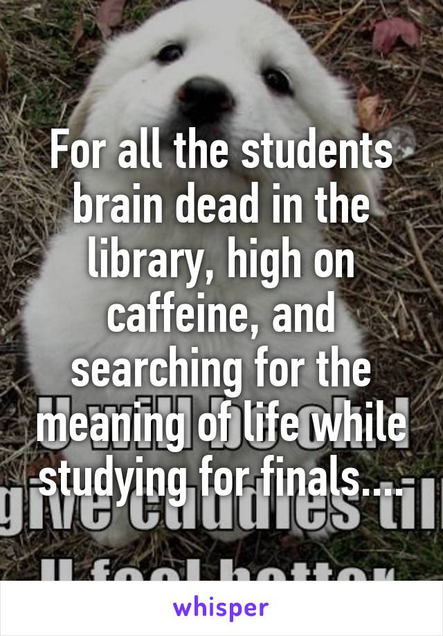 For all the students brain dead in the library, high on caffeine, and searching for the meaning of life while studying for finals....