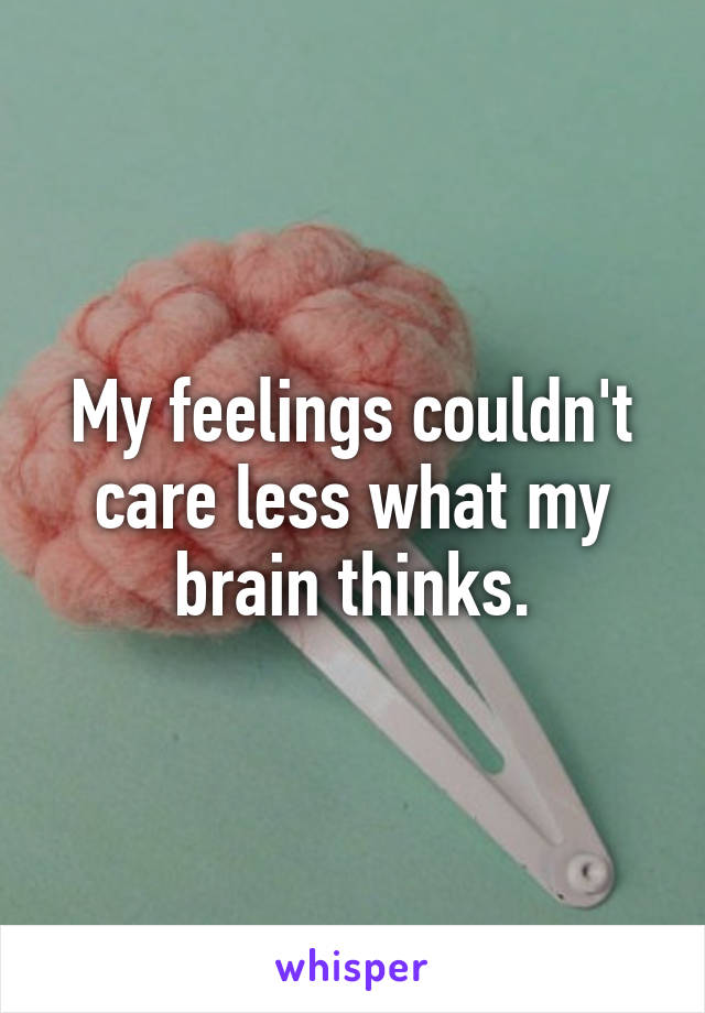 My feelings couldn't care less what my brain thinks.