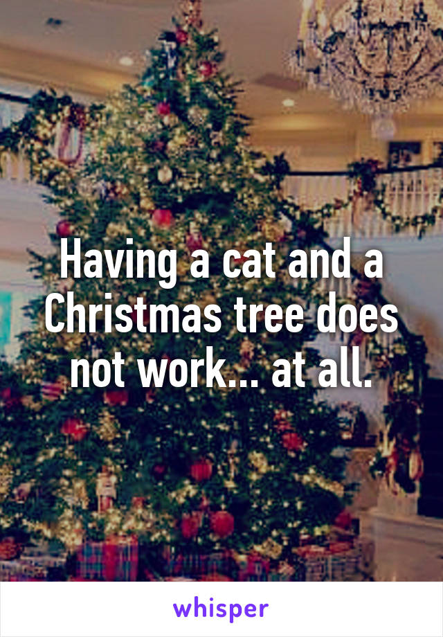 Having a cat and a Christmas tree does not work... at all.