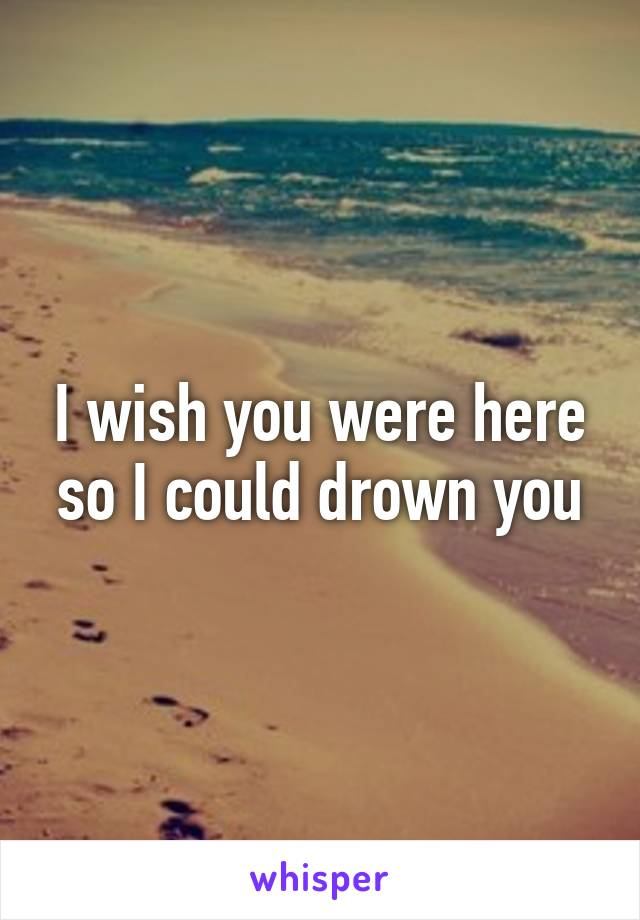 I wish you were here so I could drown you