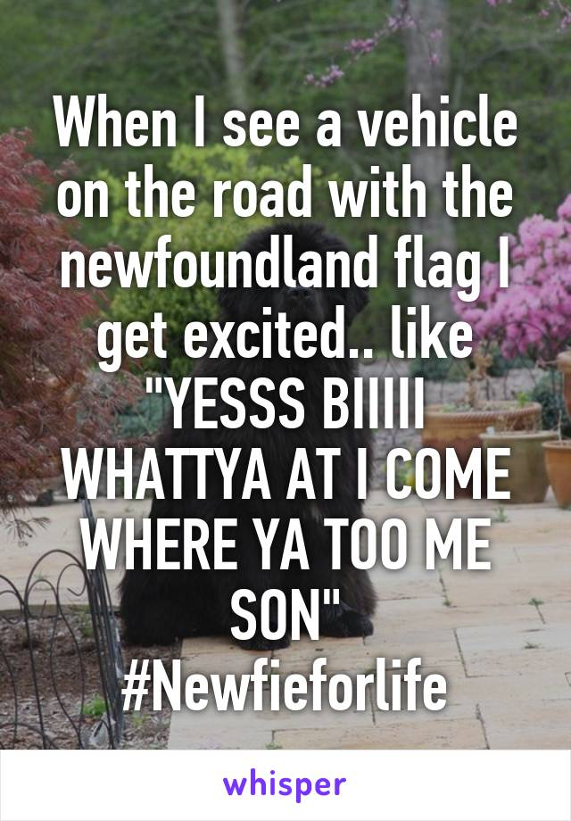 "When I see a vehicle on the road with the newfoundland flag I get excited.. like ""YESSS BIIIII WHATTYA AT I COME WHERE YA TOO ME SON"" #Newfieforlife"