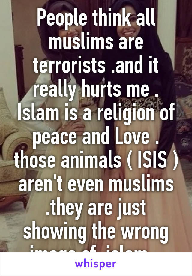People think all muslims are terrorists .and it really hurts me . Islam is a religion of peace and Love . those animals ( ISIS ) aren't even muslims .they are just showing the wrong image of  islam ..