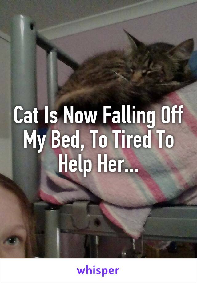 Cat Is Now Falling Off My Bed, To Tired To Help Her...