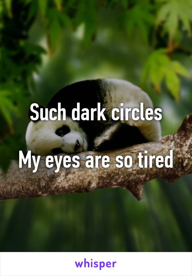 Such dark circles  My eyes are so tired