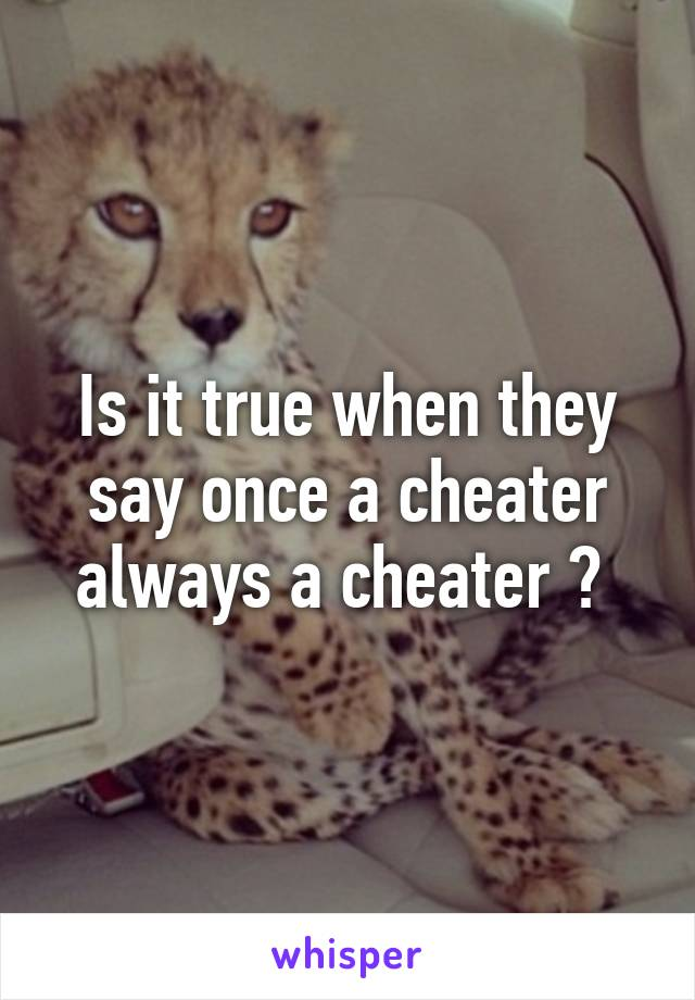 Is it true when they say once a cheater always a cheater ?