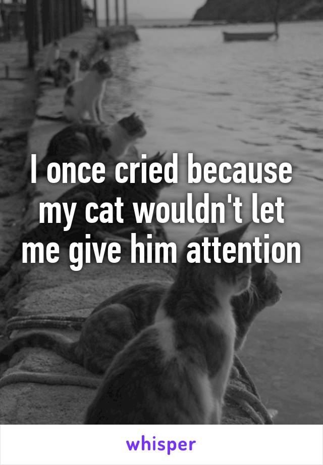 I once cried because my cat wouldn't let me give him attention