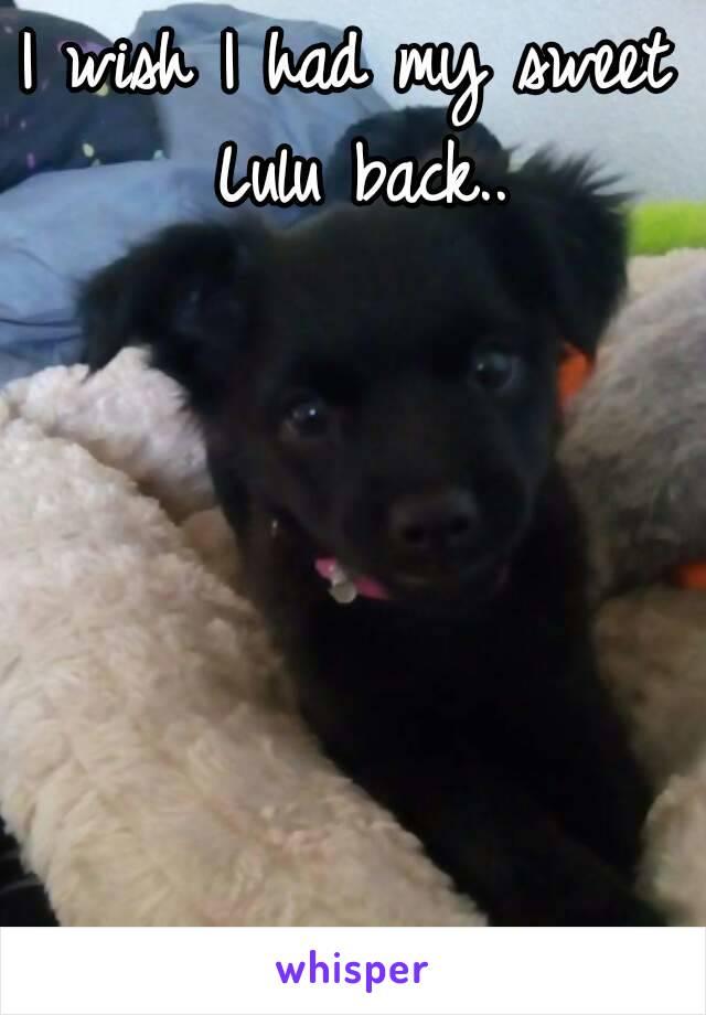 I wish I had my sweet Lulu back..
