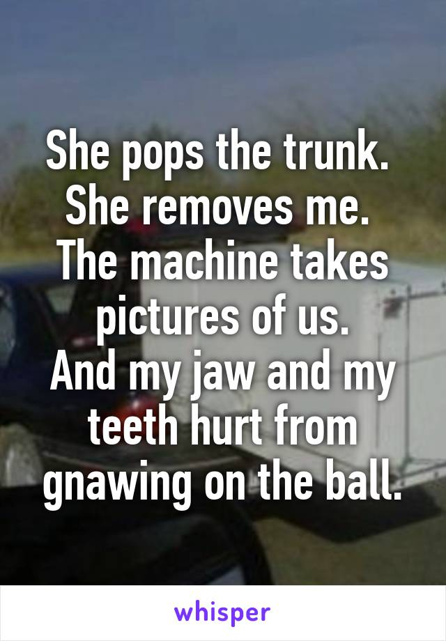 She pops the trunk.  She removes me.  The machine takes pictures of us. And my jaw and my teeth hurt from gnawing on the ball.