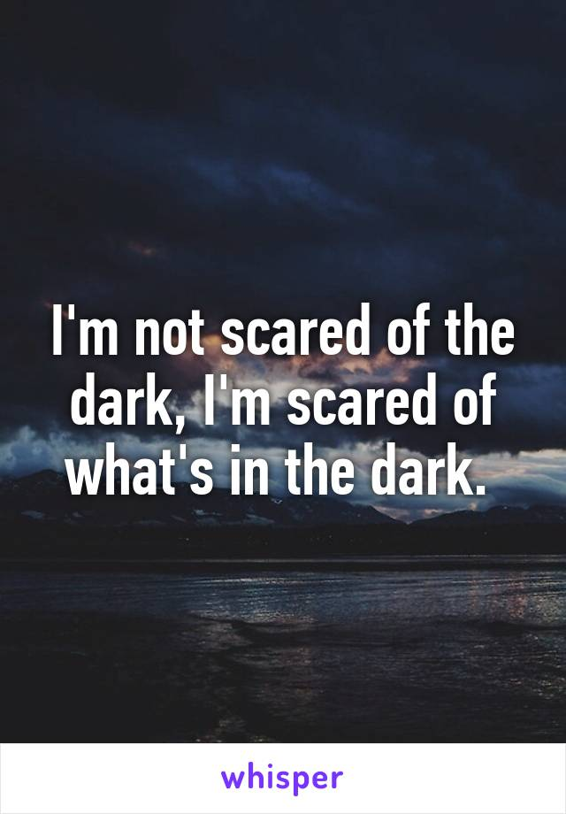 I'm not scared of the dark, I'm scared of what's in the dark.
