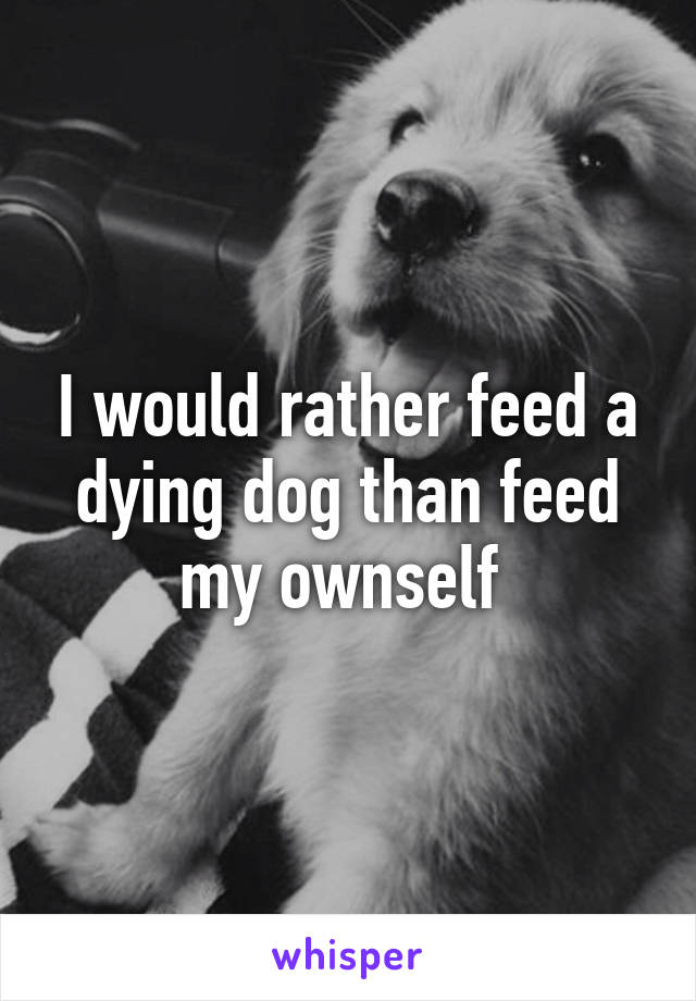 I would rather feed a dying dog than feed my ownself