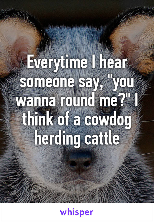 """Everytime I hear someone say, """"you wanna round me?"""" I think of a cowdog herding cattle"""