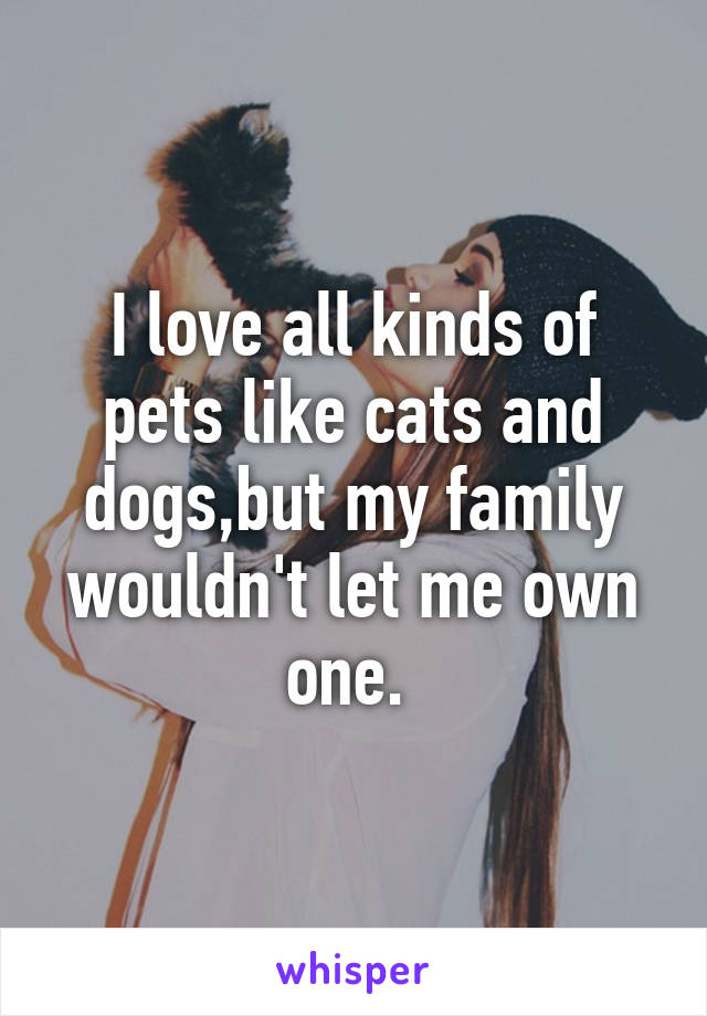 I love all kinds of pets like cats and dogs,but my family wouldn't let me own one.