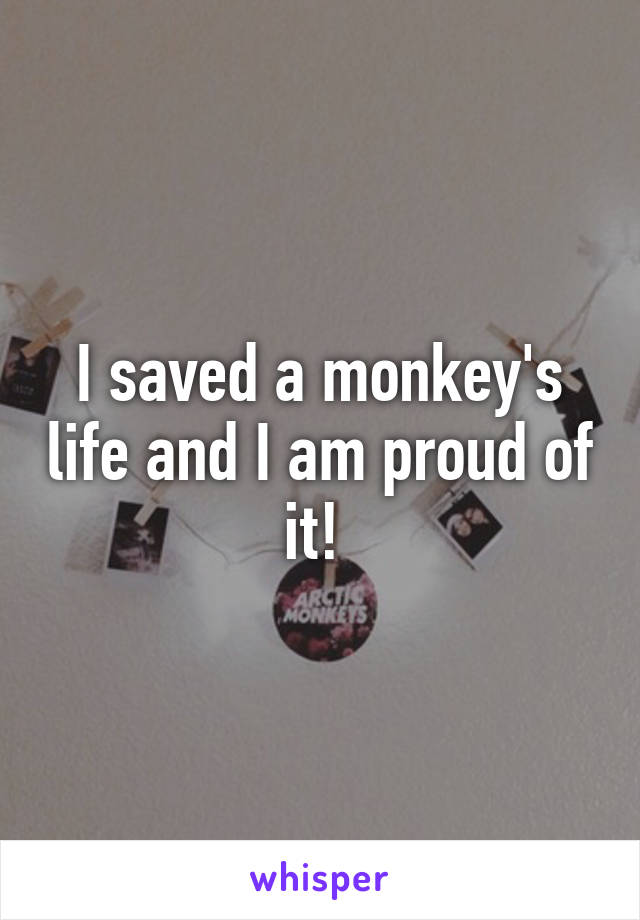 I saved a monkey's life and I am proud of it!