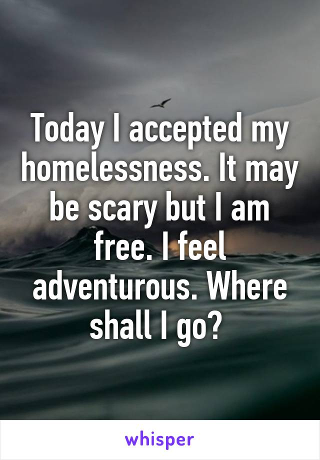 Today I accepted my homelessness. It may be scary but I am free. I feel adventurous. Where shall I go?